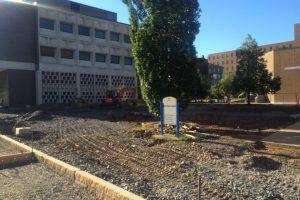 University_at_Buffalo_Grace_Plaza